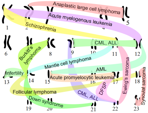 Chromosomal_translocations